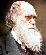 Darwin's notebooks : la lutte pour penser dans ACTUALITES darwin